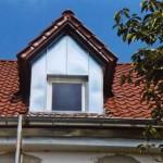 Dachaufbauten und Kamine